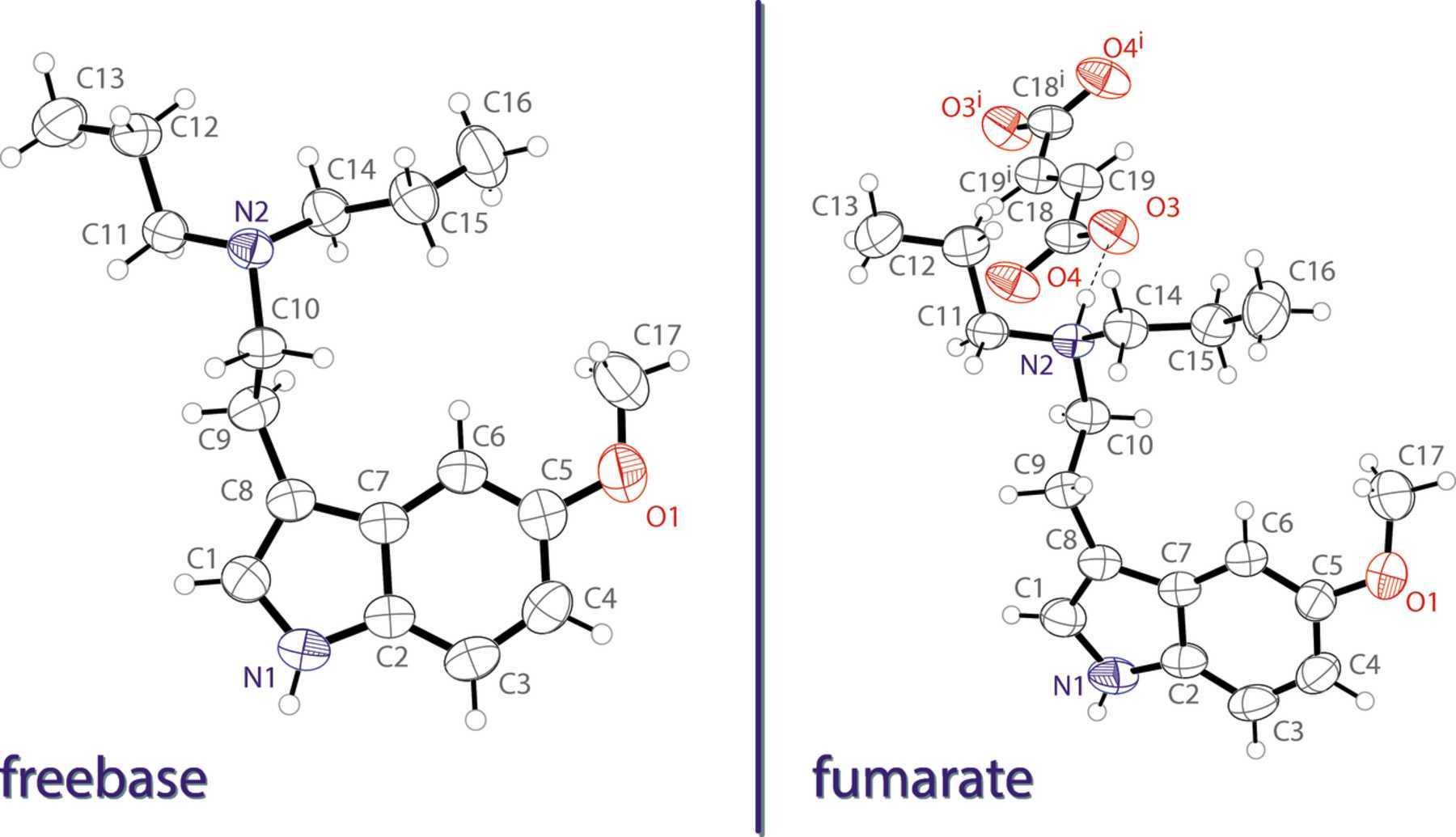 5-MeO-DPT Freebase and Fumarate